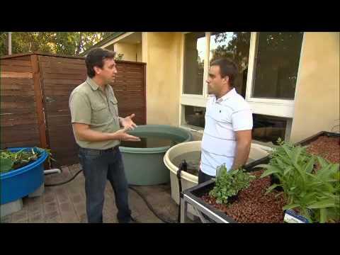 Aquaponics Australia And Solar Energy