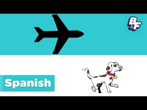 Learn Spanish transportation words with BASHO & FRIENDS - Como Vamos