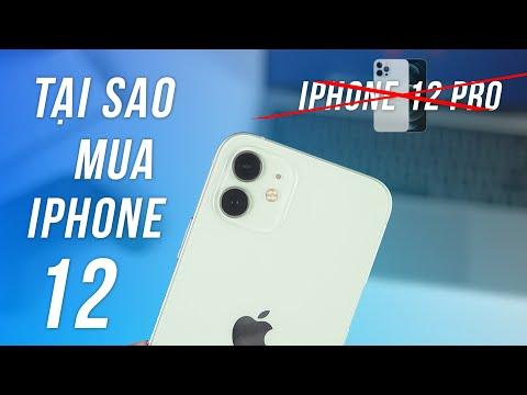 Lý Do iPhone 12 Giá Rẻ Đáng Mua Hơn Rất Nhiều iPhone 12 Pro - Mình Mua iPhone 12!