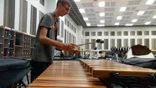 Resonant Chamber - Animusic (5.0 Octave Marimba Cover)