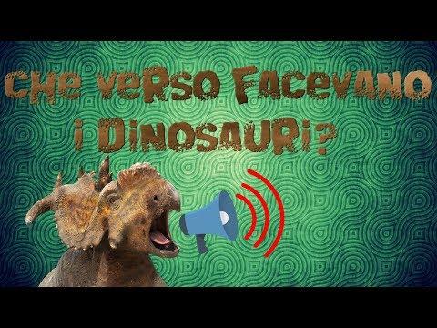 Zoosparkle - Che verso facevano i dinosauri?