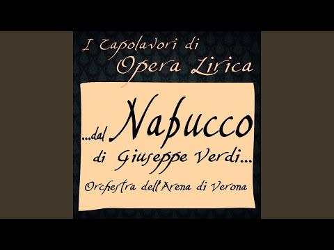 Nabucco: Che Si Vuol ?