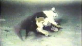 Mercury Poisoning- The Minamata Story