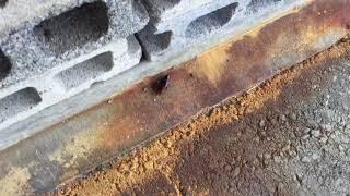 ブロックの隙間に逃げ込むゴキブリ(閲覧注意) thumbnail