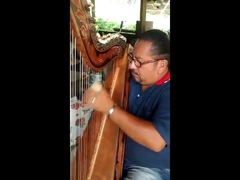 HINO NACIONAL BRASILEIRO tocado por um Argentino na Harpa Paraguaia
