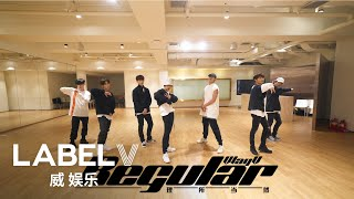 WayV 威神V '理所当然 (Regular)' Dance Practice