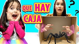 ¿Que hay en la CAJA? | What's in the Box? | Juega con Adri