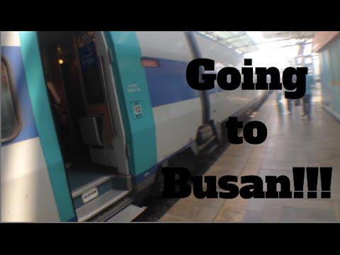 Riding a KTX | Seoul to Busan!!