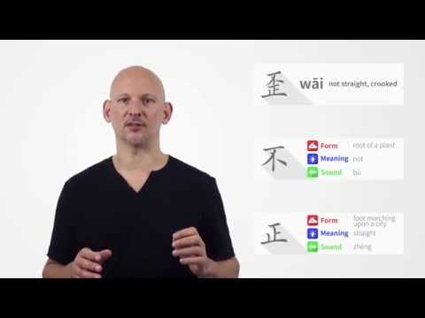 Semantic Components in Chinese Characters (Video #2)