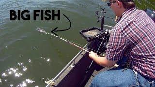 BIG Lake BIG Catfish!