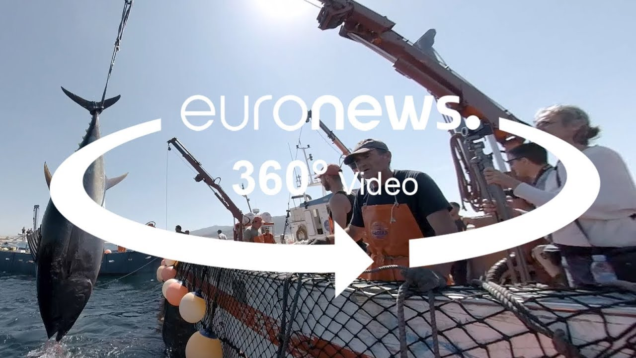 Euronews:360° video: This ancient technique is the most sustainable way to catch tuna fish