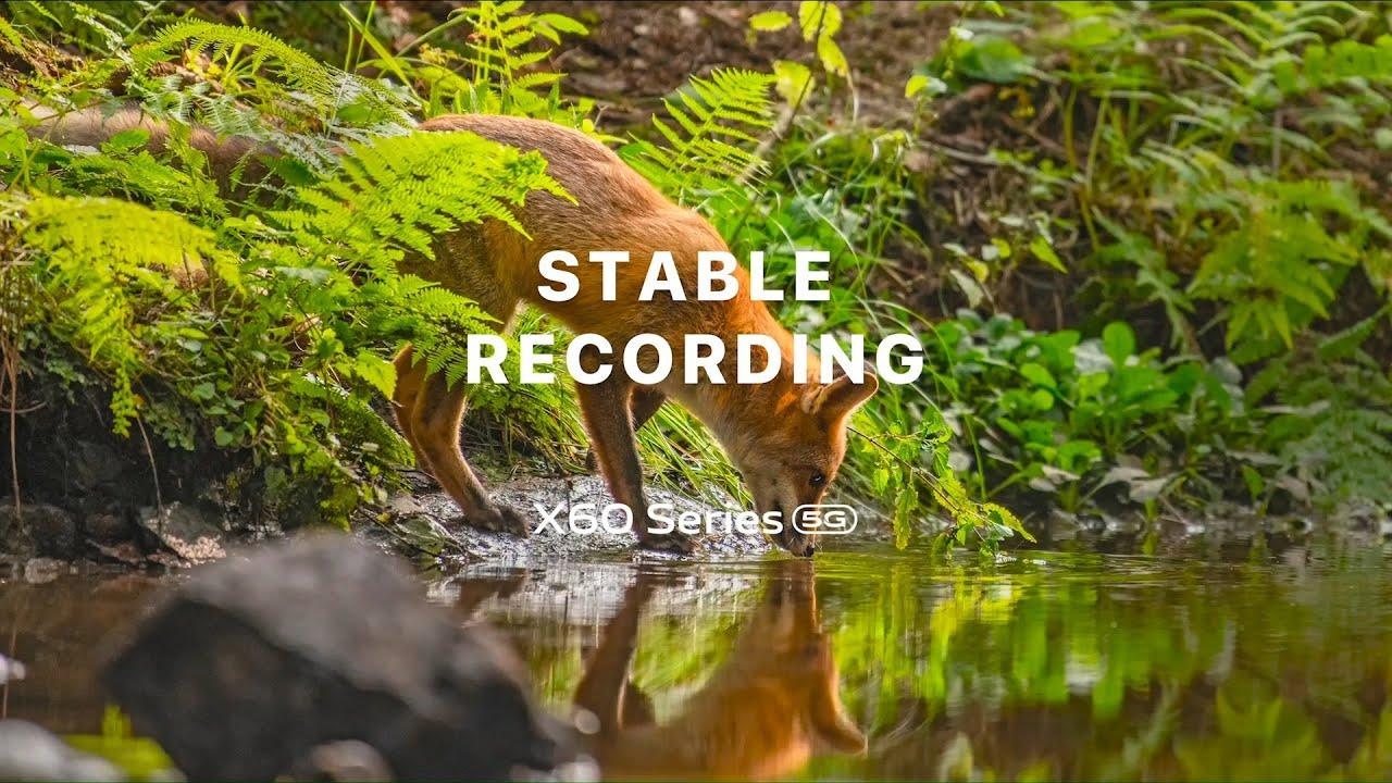 vivo X60 Series 5G - Gimbal Stabilization 2.0