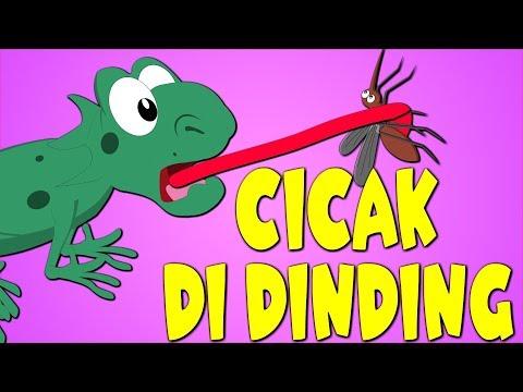 CICAK CICAK DI DINDING - Lagu Kanak Kanak Melayu Malaysia - Kompilasi 19 minutes
