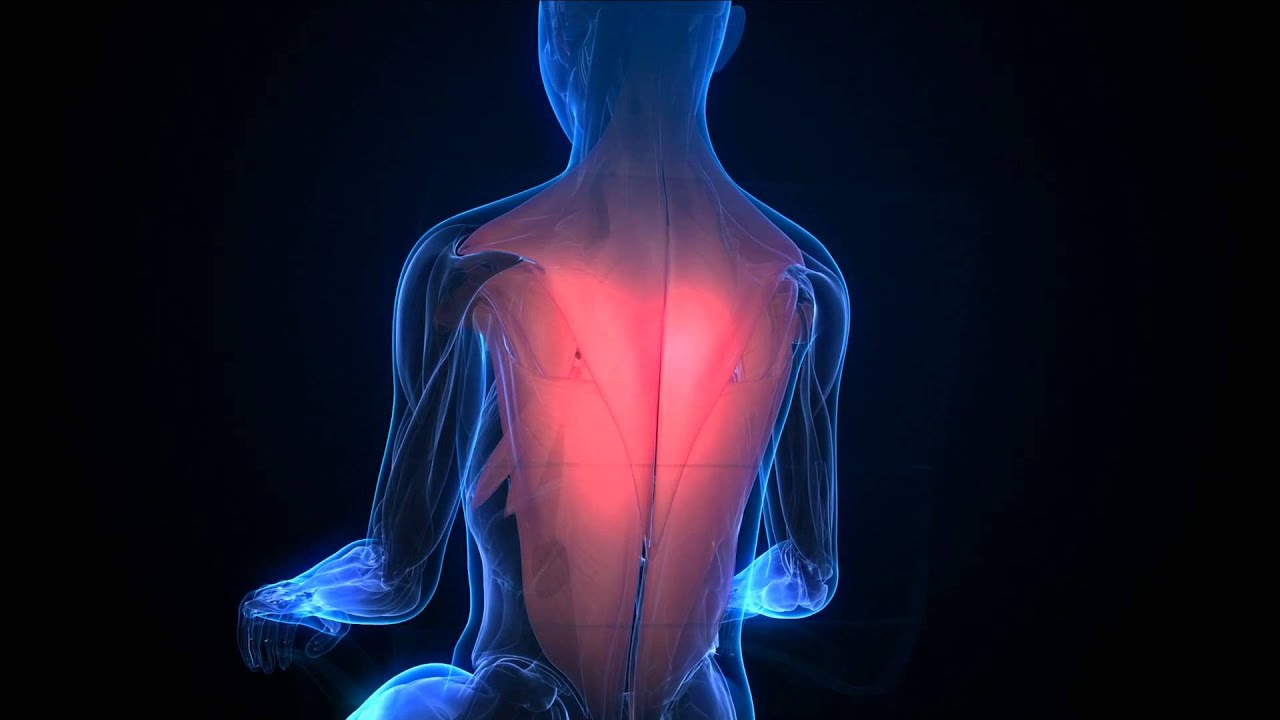 Progressive Muscle Relaxation Training