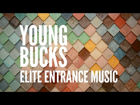 Elite Warriors- A Tribute to the Young Bucks and Matthew Lee Massie