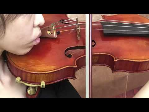 Ifstrings Private Stock VSA Custom Antonio Stradivarius 1714