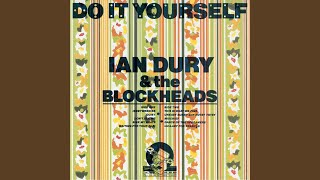 Do it yourself album by ian dury and the blockheads best ever what a waste solutioingenieria Image collections