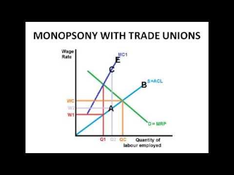 Economics A2 Level Unit 3 The Labour Market Wage Determination