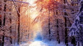 SNOW DAYZの視聴動画