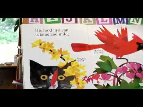 Feathers for Lunch (Children's book)