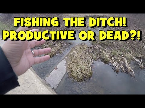 TINY DITCH Saves the Day Again! My LAST FISHING SESSION of 2018!