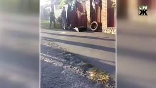 Родини загиблих у ДТП хлопців принесли до будинку начальника автодору домовину