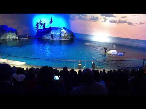 The sheed aquarium  Chicago Illinois