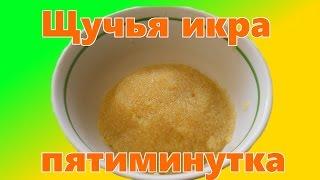 Как приготовить щучью икру  Пятиминутка(Вкуснейший деликатес. Щучья икра. В этом видео я показал старинный рецепт приготовления щучьей икры. Моя..., 2015-11-20T15:11:16.000Z)