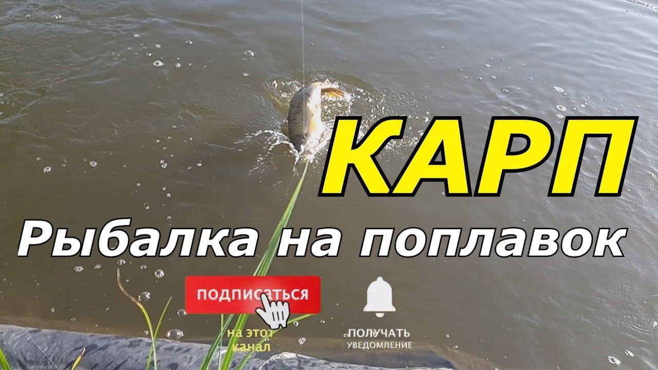 👍🐳👉 Рыбалка на поплавок на удочку в своём искусственном пруду