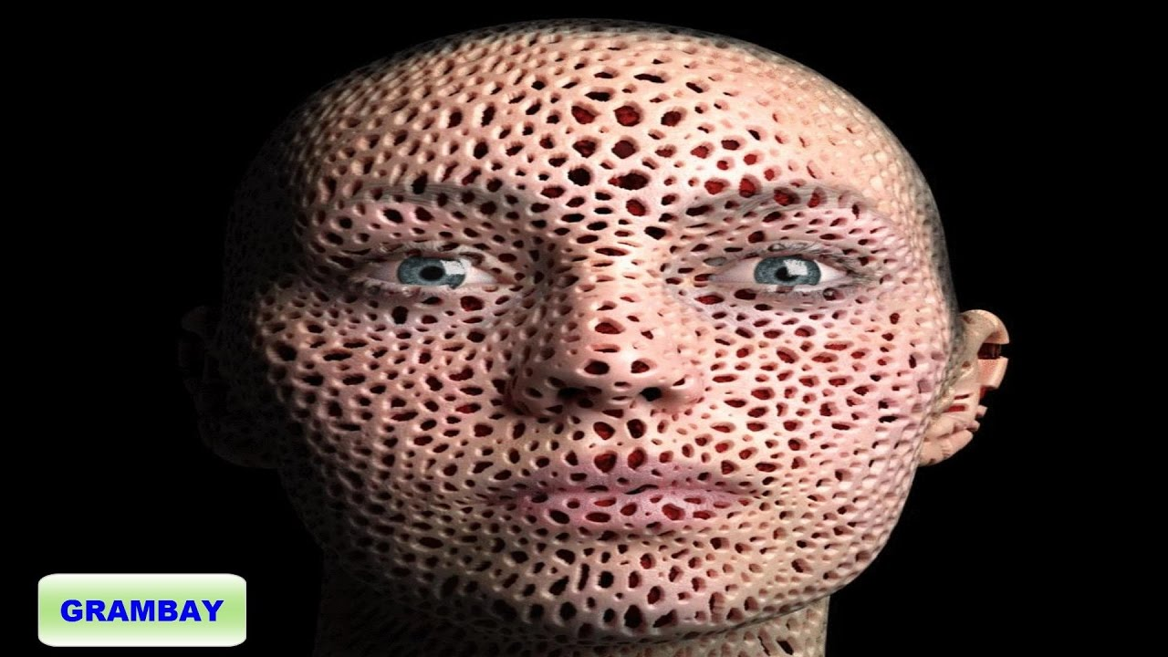 Puedes terminar de ver este video examen de tripofobia for Agujeros en el cuerpo