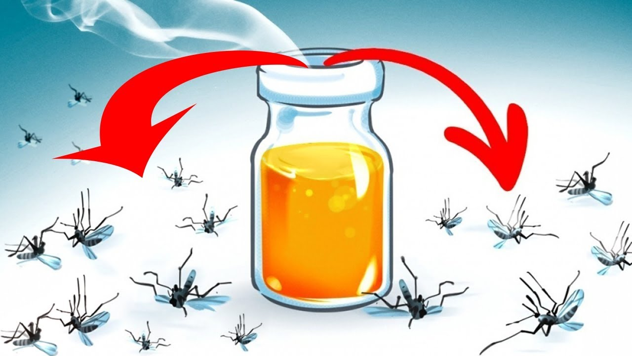 Adi s mosquitos trucos para eliminar los mosquitos del for Como eliminar los mosquitos del jardin