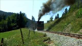 Schneebergbahn (Puchberg) - Zahnradbahn - Salamander - Dampfzug - Steam engine