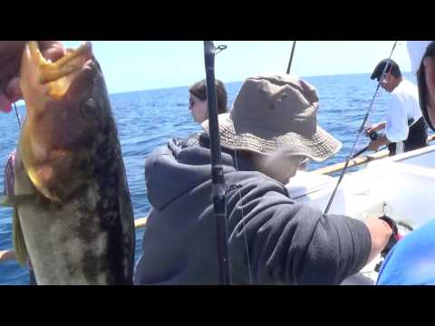 Fishing at the San Clemente Islands
