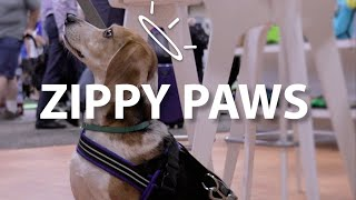 Things We Woof About: Zippy Paws