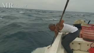 Download Video Kejadian Tak Terduga saat mancing dapat Ikan Pari kemudian melahirkan anak.. MP3 3GP MP4