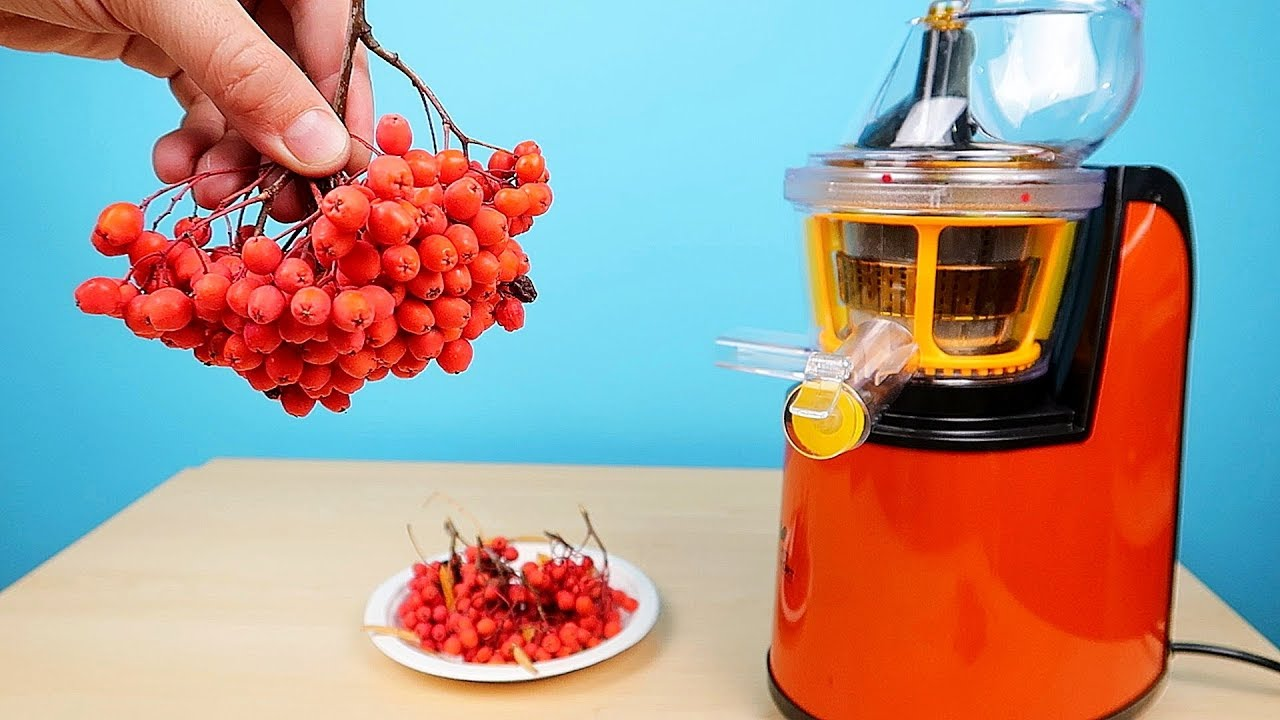 Как сделать сок из рябины