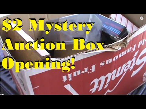 $2 Mystery Auction Box Opening - What treasures will we find!