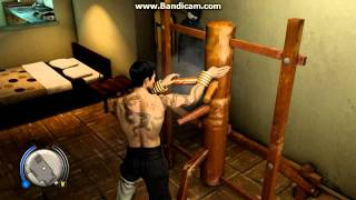 Sleeping Dogs Martial Arts Pack