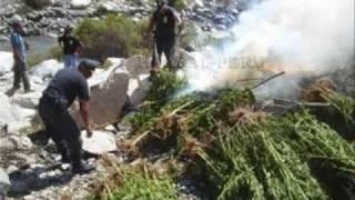 Play La Siembra En El Cerro