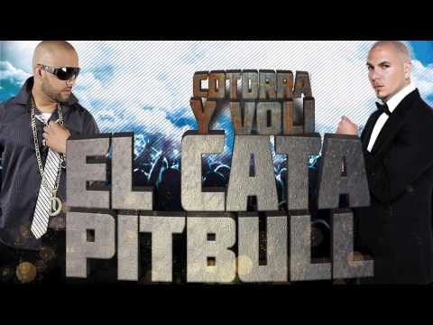 EL CATA & PITBULL – Cotorra Y Voli (Official Webclip)