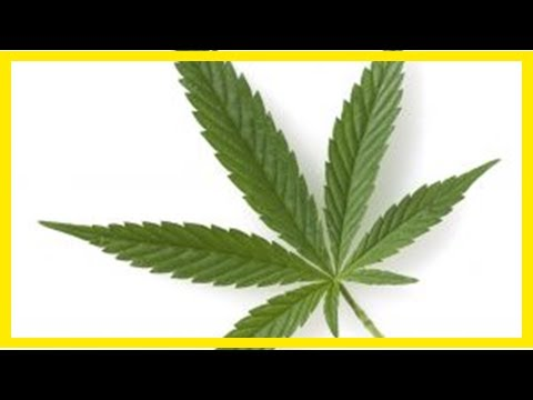 Breaking News | Why Canopy Needs Aphria Takeover to Balance Aurora-Medreleaf Deal