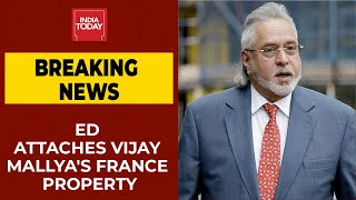 Vijay Mallya's France Property Worth Rs 14 Crore Attached By Enforcement Directorate | Breaking News