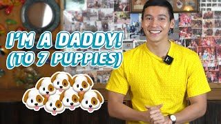 MY DOG GAVE BIRTH TO 7 PUPPIES | Enchong Dee