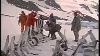 Одиссея команды Кусто Огонь и лед Документальный фильм