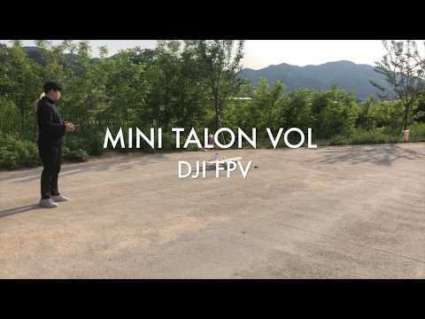 Фото DJI FPV MINI TALON VTOL