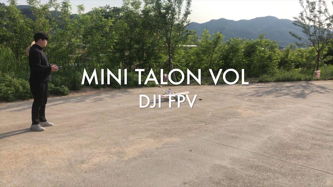 DJI FPV MINI TALON VTOL картинки