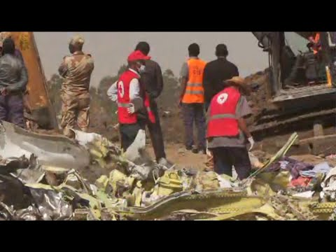 Airlines ground Boeing 737 MAX 8 planes after Ethiopian air crash