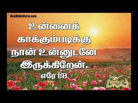 jesus bible promise word