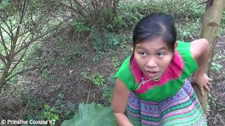 Survival skills - Finding food meet gac fruit and cooking rice in bamboo - Eating delicious