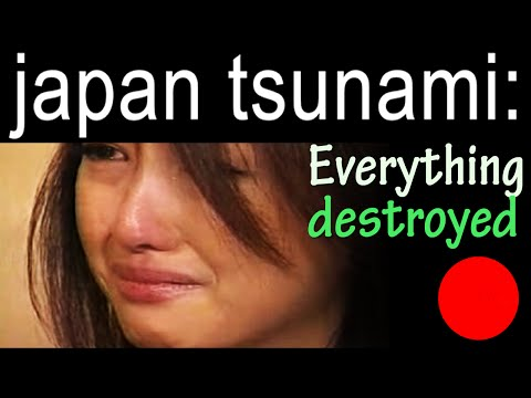 japan tsunami: Japan is in danger - Everything is destroyed